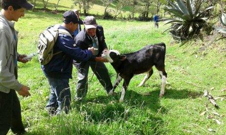 La secretaria de medio ambiente y desarrollo rural  cuenta con veterinario