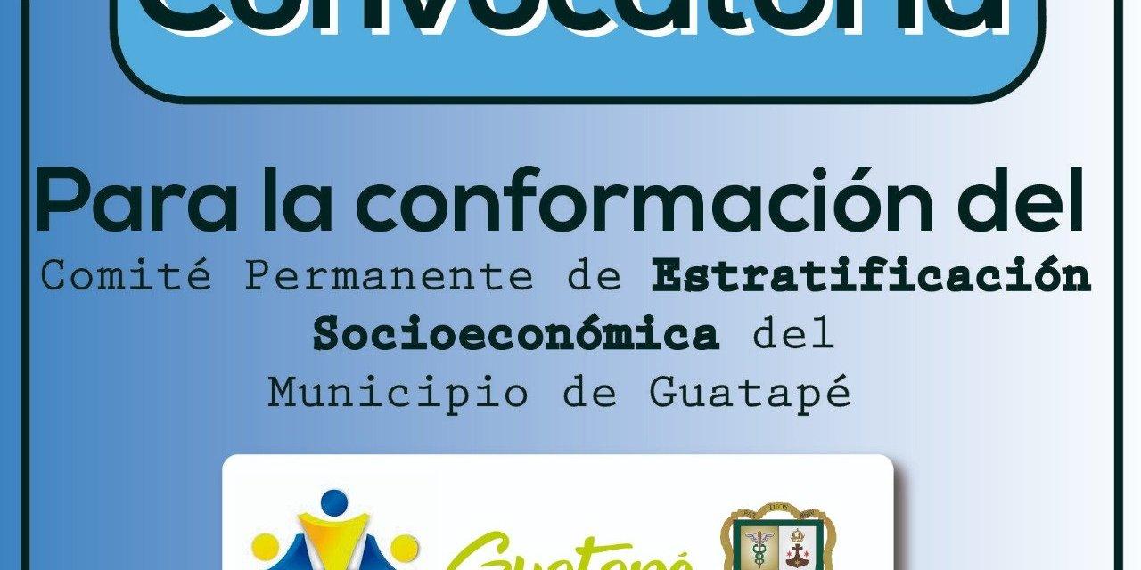 Has parte del comité de estratificación socioeconómica