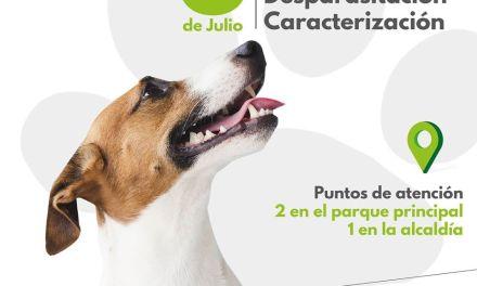 Jornada departamental de vacunación antirrábica para perros y gatos