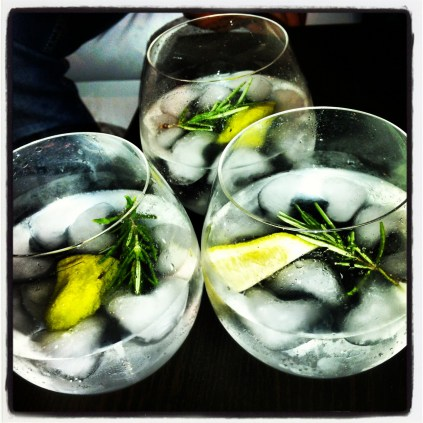 Gin Tonics nivel experto