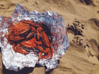 Nécoras - steamed crab