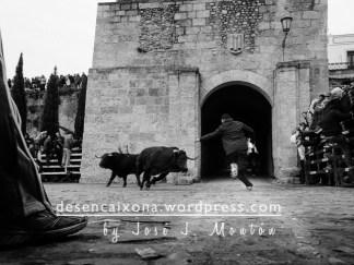 Toros de Hnos. Cambronell en la Bóveda.
