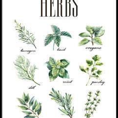 Kitchen Prints Backsplash Tile Lowes Herbs Green Poster Art For Dining Room Stylish Online