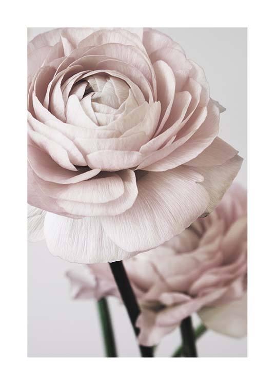Pink Flower Dream No2 Poster