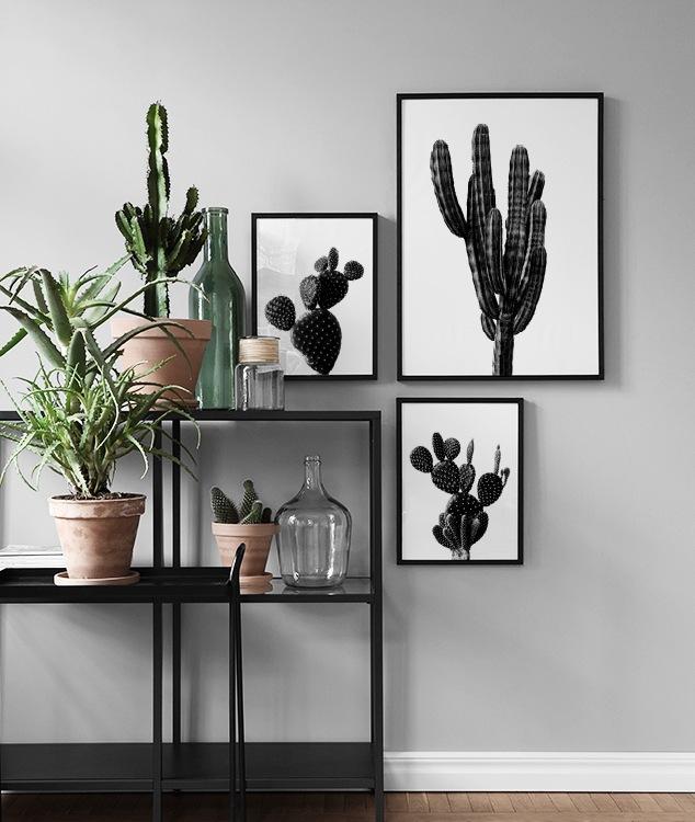 Inspiratie voor de zwartwit fotowand en collage  Posters
