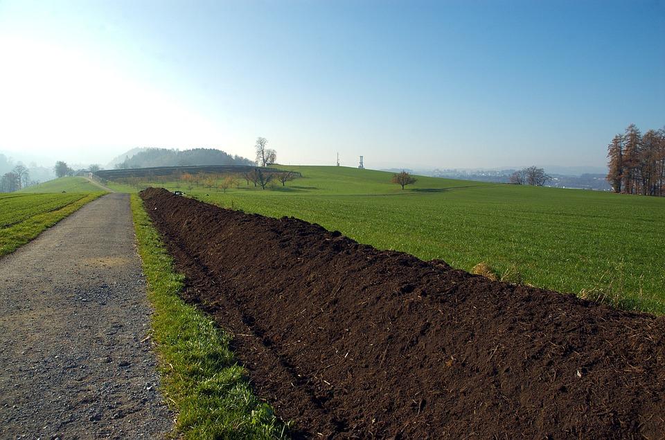Adubos orgânicos e sua importância para a agricultura ecológica