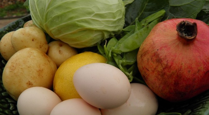 Ovos orgânicos: o que você deve saber sobre a certificação