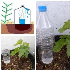 irrigação por evaporação e condensação