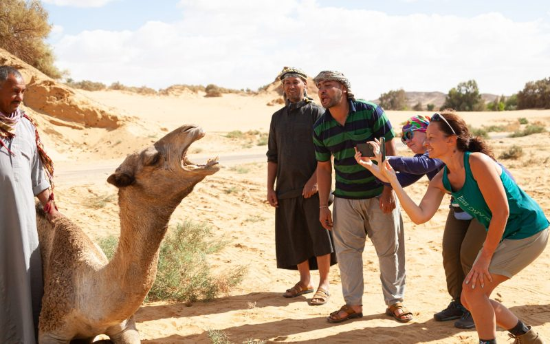 With Camel