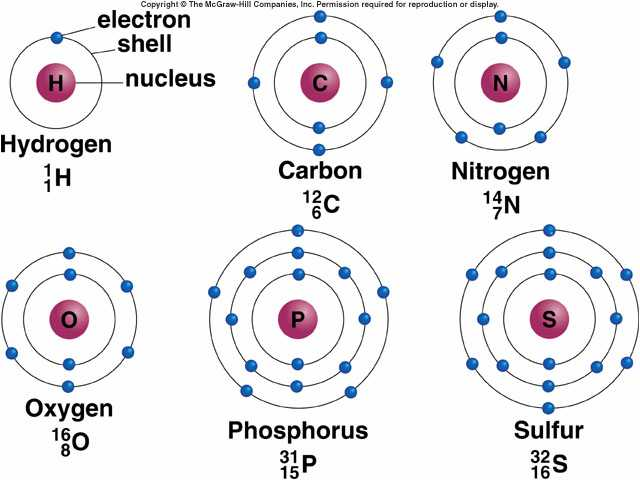 Relationship Between Number Protons And Electrons Atom