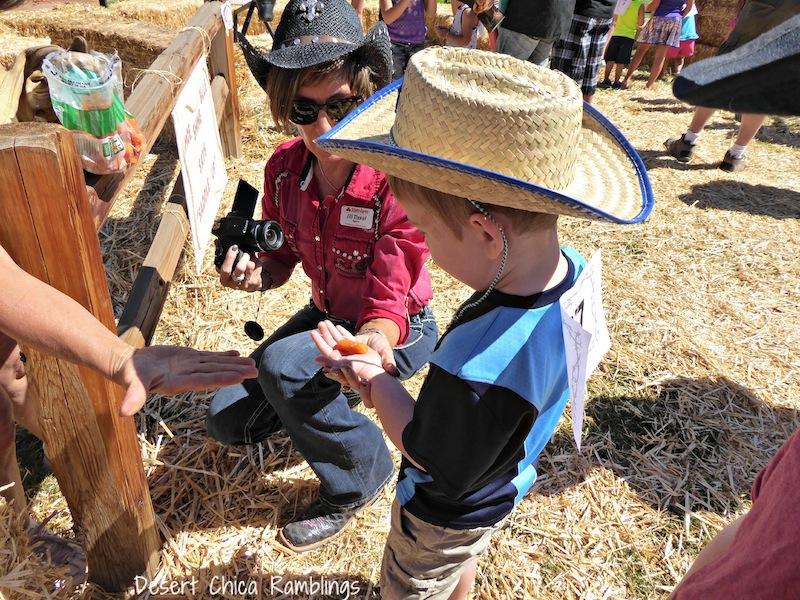 Feeding carrots to horses Show Low Days.jpg