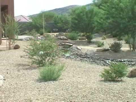 backyard desert landscaping