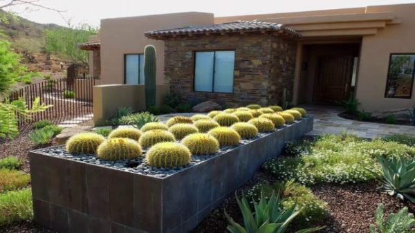desert landscaping ideas & residential