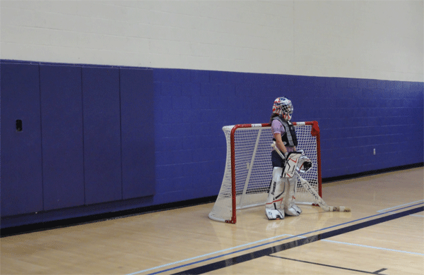Lonely Goalie