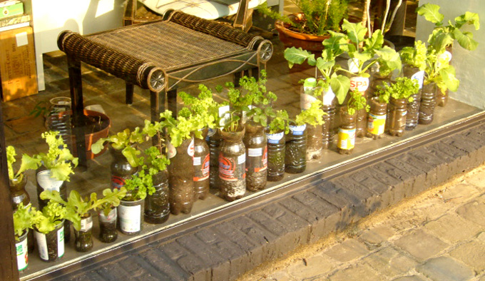 Great Ideas For Container Gardening Willem – CONTAINER GARDENING