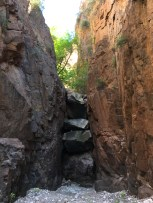 Looking up a side canyon.