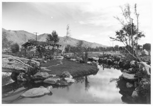 Pleasure Garden, Ansel Adams, 1943
