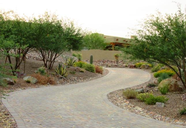 diy xeriscape landscape design