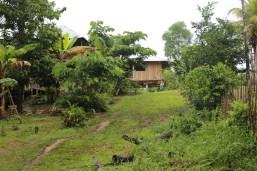 San Martin de Amacayacu