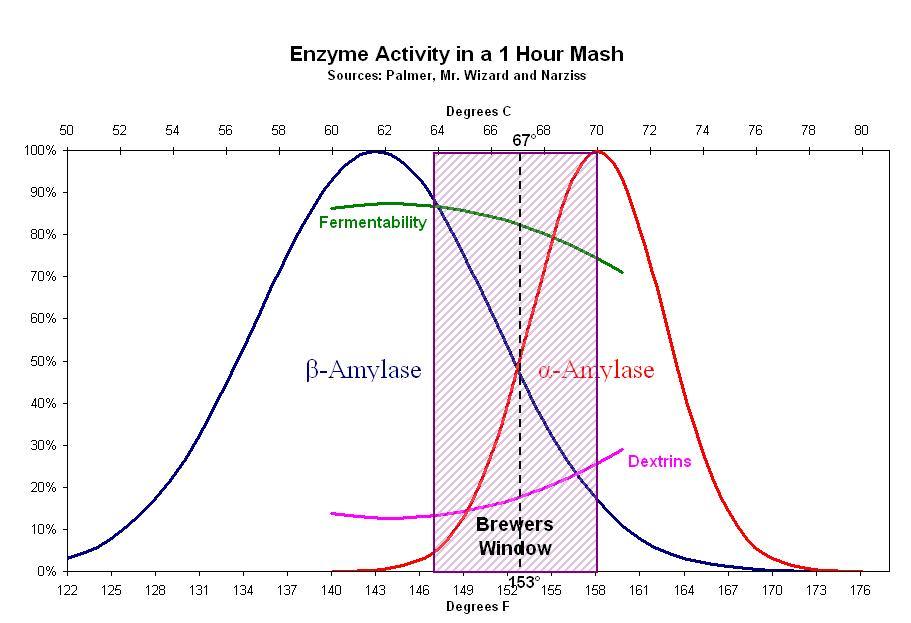 enzyme_activity_one_hour_mash