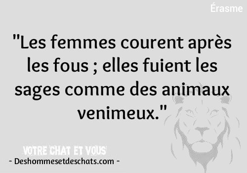 Photo Comique Proverbe Connu Image Animaux Citation Homme Des