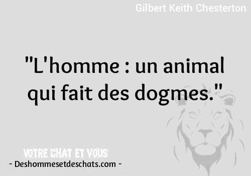 Phrase Comique Photo Hilarante Citation Amour Image Dicton