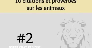 #2 – 10 citations et proverbes sur les animaux