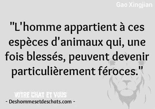 Top Citation Vie Proverbe Sur Les Hommes Citation Animal De