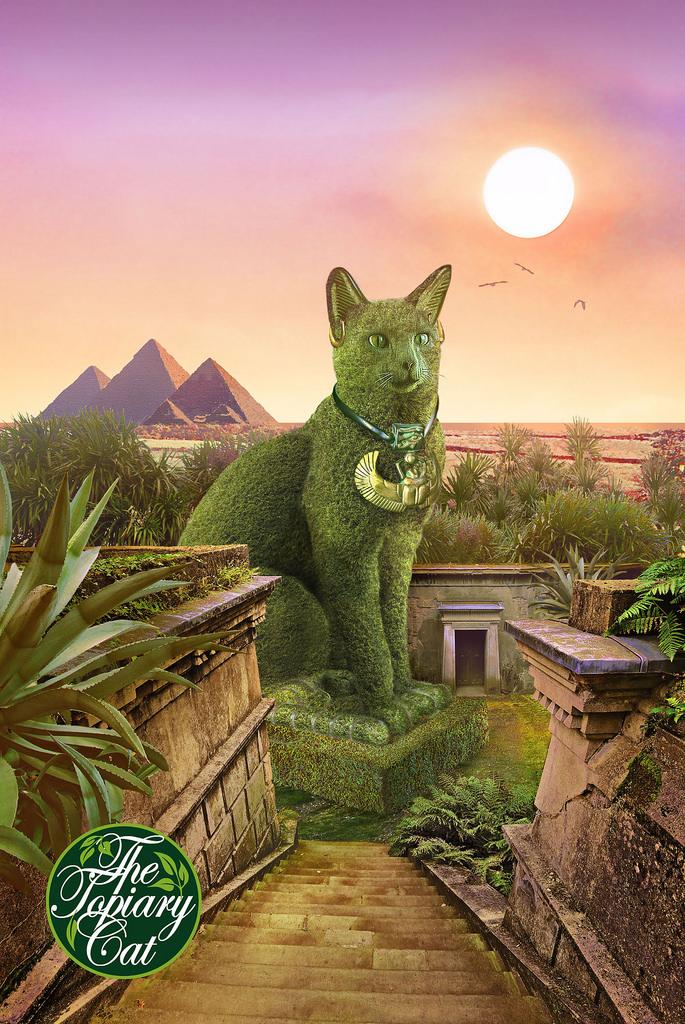 Foto de chat petits chats images marrantes photo marrante for Cat espace vert