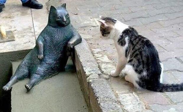 chat-tombili-cat-tombili-sculpture-chat-statue-de-chat-figurine-chat-statue-sculpture-en-bronze-sculpture-bronze-contemporain-sculpteur-sur-bronze