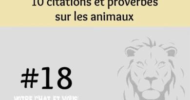 #18 – 10 citations et proverbes sur les animaux