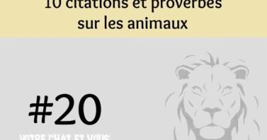 #20 – 10 citations et proverbes sur les animaux