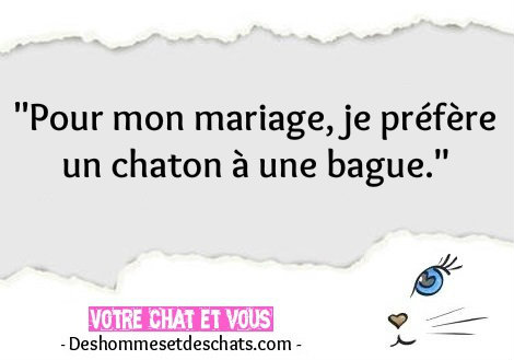 Photos Insolites Humour Images Citation Rigolote Proverbe