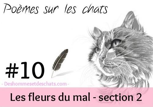 10 le chat de charles baudelaire des hommes et des chats - Comment empecher un chat d uriner partout ...