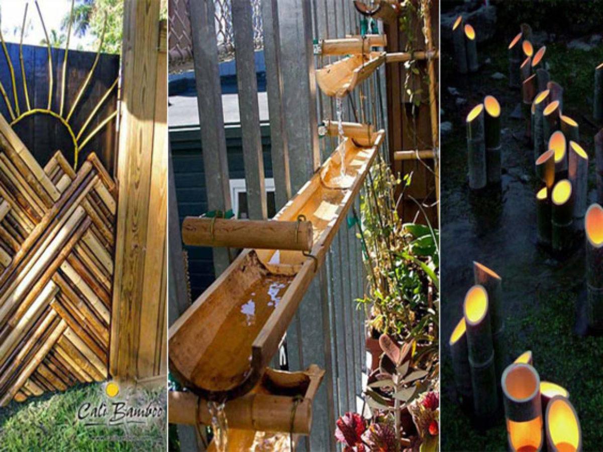 utiliser les bambous dans votre jardin