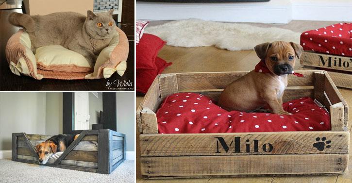 10 paniers faits maison pour votre chien ou votre chat  Des ides