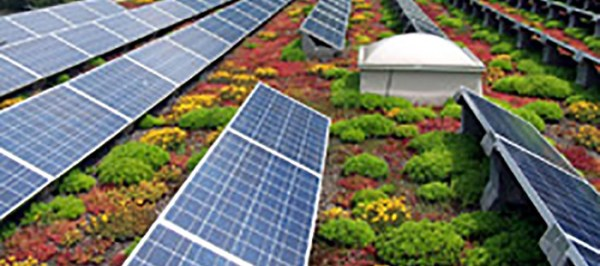 solar-green-roof