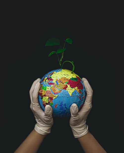 An image of a globe depicting climate action while the person holding it is wearing latex gloves and there is a plant sprouting from it