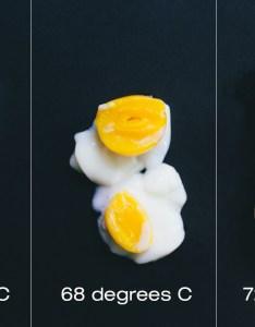 Chefsteps joule nanettewong egg chart also brings modern sous vide to the home design milk rh
