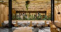 Piedra Sal: A Modern Restaurant in Mexico City - Design Milk