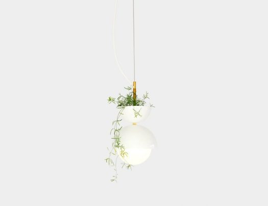 A Plantable Light Fixture by Ryan Taylor for Object/Interface