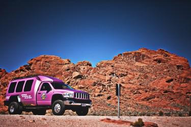 車選びでピンク色に乗るのに年齢は関係ないという意見は多い