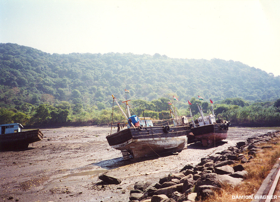 Dock Of Monkey Island India