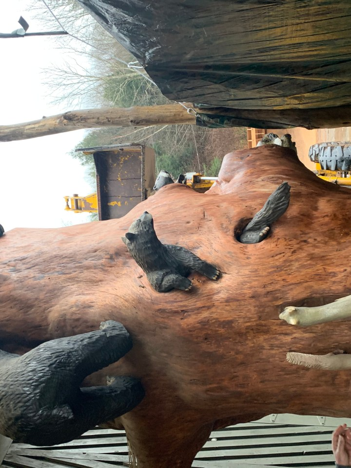 carved tree forest animals