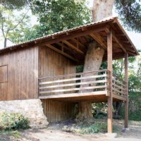 * Residential Architecture: Two-Tree House by Golany Architects