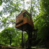 * Residential Architecture: Tree Houses by Takashi Kobayashi