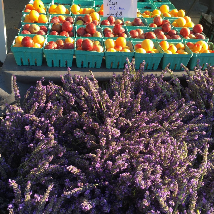 Lavender and Plums