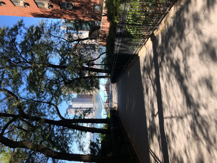 Design and Style Report image, Brooklyn Heights