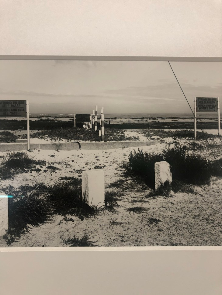 Design and Style Report image, David Goldblatt photography at Pace Gallery NY