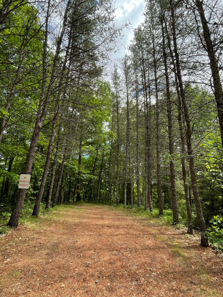 Design and Style Report image, Aitkin hiking trail in Minnesota